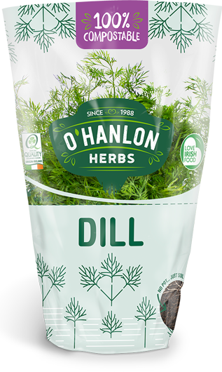 Dill care self watering
